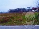 Immagine di Terreno agricolo residuale e terreno lottizzabile.