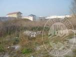 Immagine di Lotto 3 - area fabbricabile - via altiero spinelli - suzzara
