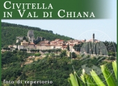 Terreni a CIVITELLA IN VAL DI CHIANA - Lotto 1