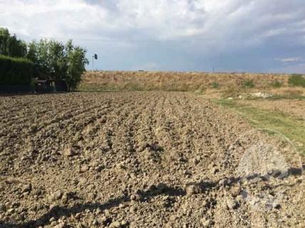 Lotto  11: piena proprieta' terreno edificabile in San Secondo Parmense loc. Isoletta
